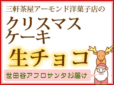 【世田谷区内限定:お届け無料】サンタがお届け!クリスマスケーキ:生チョコ(コーティング)7号(21cm)