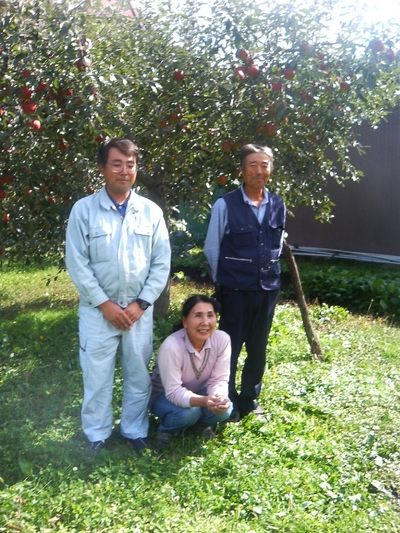 訳あり!JAS有機りんご農家さんのりんご「つがる」【青森産/有機認証なし】大箱(2段積み)