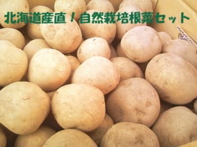 北海道から産地直送!自然栽培野菜セット【ジャガイモ10キロ/中部まで送料込み】