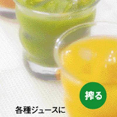 訳あり品でお買い得!野菜の栄養をそのまま生搾り! マルチジューサー&クッカー「ベジフル」VEGEFULL ZJ-B1