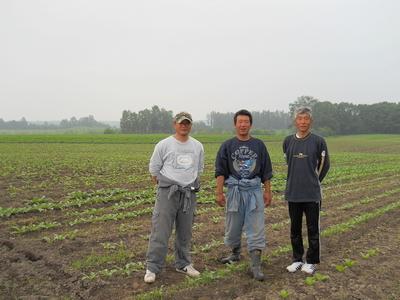 北海道から産地直送!自然栽培野菜セット【ニンジン30キロ/中部まで送料込み】