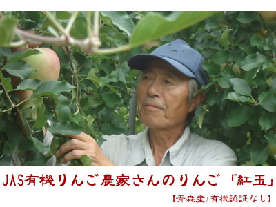 JAS有機りんご農家さんのりんご「紅玉」【青森産/有機転換期間中】大箱(2段積み)