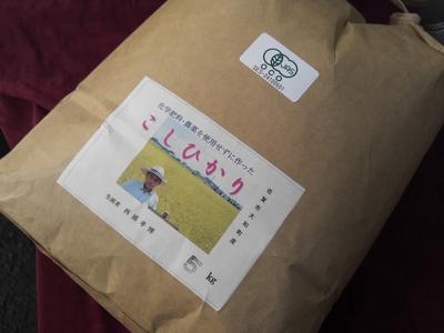 安心の九州産!自然米「コシヒカリ」【27年産/玄米/5キロ】