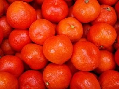 赤い果皮に濃厚な味!JAS有機認証「幻の」小原紅みかん【3キロ/香川産】