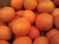 イイとこ取りの新柑橘!あまくさ(天草)【10キロ/JAS有機/愛媛産】
