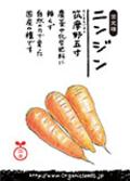 自然農法種子「ニンジン(筑摩野五寸)」