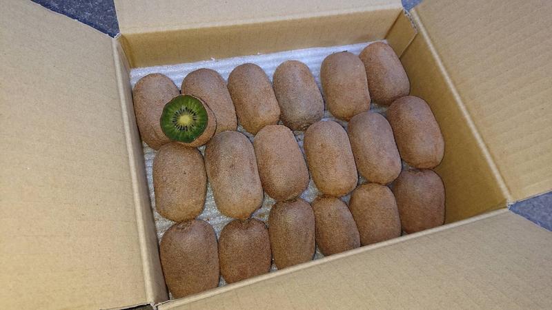 自然栽培キウイフルーツ【茨城産/2キロ】