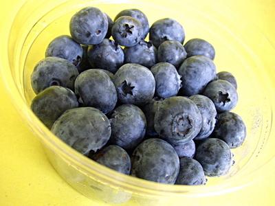 無農薬だから安心!甘酸っぱくておいしいブルーベリー 100g 【神奈川県川崎市・横山農園】