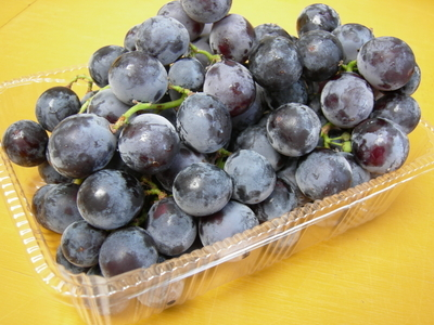ぶどうの王様 農薬・化学肥料不使用のぶどう ブラックオリンピア 1kg【山形産】