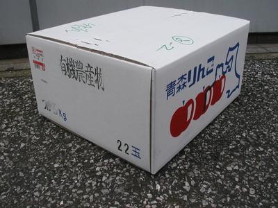 JAS有機りんご「いわき」【青森産】大箱(2段積み)