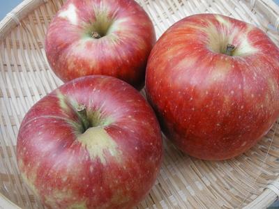 JAS有機りんご「ジョナゴールド」【青森産】大箱(2段積み)