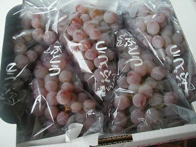 癖のない飽きの来ない味の日本の伝統品種!無農薬の甲州ぶどう2kg【山形産/農薬化学肥料不使用】