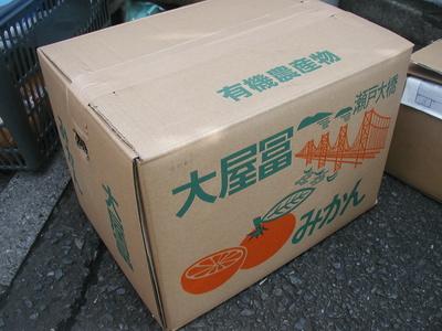 冬のギフトにおすすめ!JAS有機みかん【熊本・香川県産/JAS有機機】5kg箱