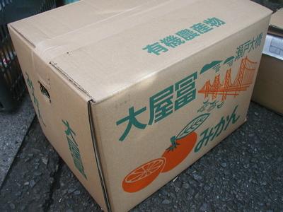 冬のコタツの友!JAS有機みかん【熊本・香川産/JAS有機】700g