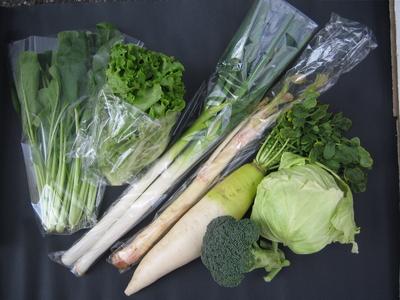 農家からの直行便!自然農法産野菜セット【5〜7種類/送料別】