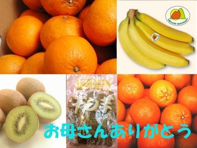 ダイエット応援!季節のフルーツ詰め合わせセット