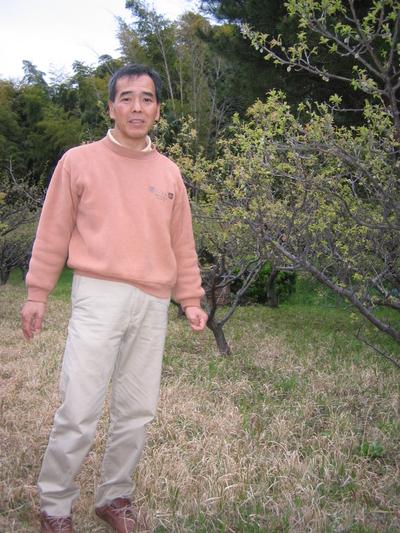 手摘みの梅を園主自らが漬け込んだ 横山農園の梅干し【自然農法産/250g】