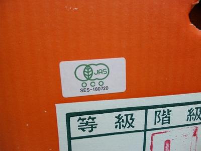 春の予感!いいよかん(予感)! JAS有機いよかん【香川・広島・愛媛産/10kg】