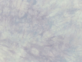 むら染め布 カットクロス50cm×50cm(紫/purple1)ハワイアンキルト・ステンドキルト・パッチワーク