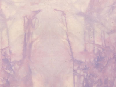 むら染め布 カットクロス50cm×50cm(紫/purple2)ハワイアンキルト・ステンドキルト・パッチワーク