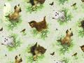 【雑貨/輸入生地/SPX Fabrics】子猫/h91 カットクロス50cm×55cm