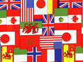 【雑貨/USAコットン/HAWAIIPRINT】国旗 /U317 カットクロス50cm×55m