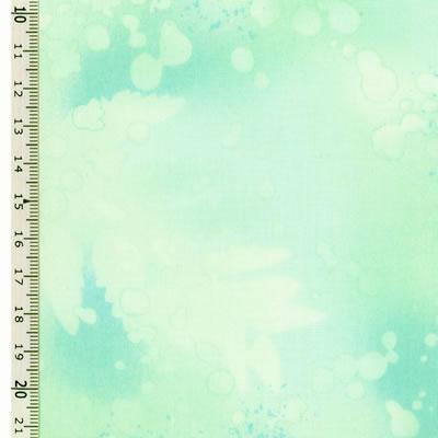 【雑貨/USAコットン/BENARTEX(ベナテックス)】HH-66/フォッシルファーン(Fossil Fern):ライトブルー カットクロス50cm×55cm