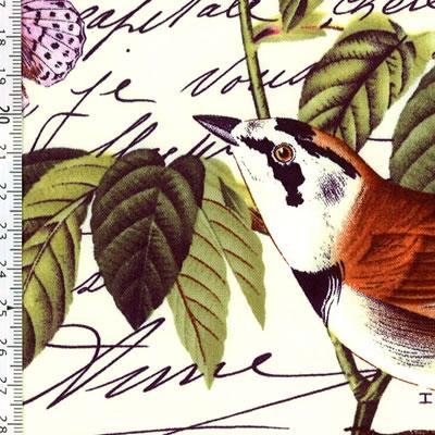 【雑貨/USAコットン/Michael Miller(マイケルミラー)】HH-68/花と鳥 カットクロス50cm×55cm