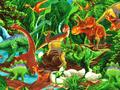 【雑貨/USAコットン/TIMELESS TREASURES(タイムレストレジャーズ)】HH-70/恐竜 カットクロス50cm×55cm