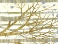 【雑貨/USAコットン/ROBERT KAUFMAN(ロバートカフマン)】HH-78/森の声 1m(幅112cm)