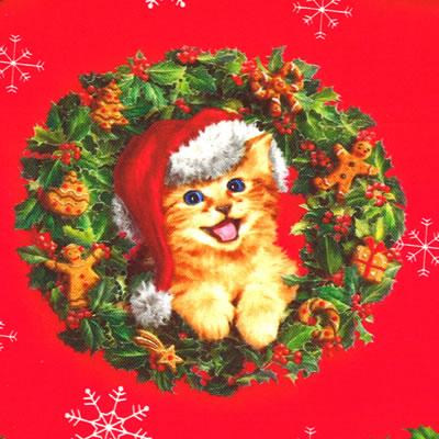 【雑貨/USAコットン/ROBERT KAUFMAN(ロバートカフマン)】C-108/クリスマスキャット 50cm×55cm