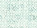 【雑貨/USAコットン/ROBERT KAUFMAN(ロバートカフマン)】C-116/スノーモチーフ カットクロス 50cm×55cm