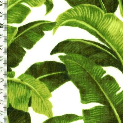 【雑貨/USAコットン/RJR】U-470/バナナの木 50cm×55cm