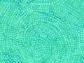 【雑貨/USAコットン/バティック】HHH-39/Spiral Green 50cm×55cm