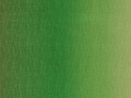 【雑貨/USAコットン/MAYWOOD】U-496/Gradation Green 50cm×55cm