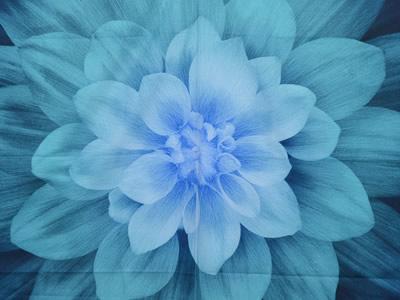 【雑貨/パネル/HOFFMAN(ホフマン)】P-88/Dream Big(ブルー) サイズ:110cm×110cm