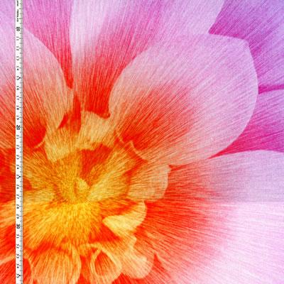 【雑貨/パネル/HOFFMAN(ホフマン)】P-89/Dream Big(パープル) サイズ:110cm×110cm