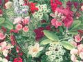 【雑貨/USAコットン/SARARA JAPAN】HHH-65/Flower garden 50cm×55cm
