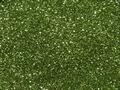 【ラメグリッター/ジェルネイル】 メタリック(粒子) 215.ハーブグリーン /8g