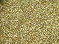 【ラメグリッター/ジェルネイル】 ホログラム 107.ライトゴールド /8g