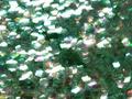 【ラメグリッター/ジェルネイル】 オーロラ2 61.六角Mミントグリーン /8g