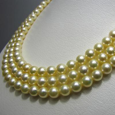 【ジュエリー/真珠/ネックレス】ゴールデンパール3連ネックレス 6.5mm〜7mm