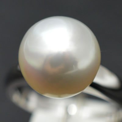 【ジュエリー/パール/指輪】PT 南洋パールリング 10.7mm