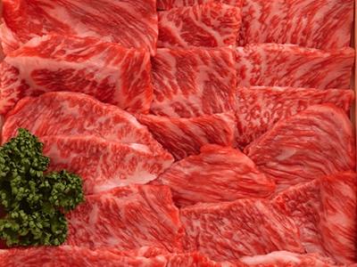 葉山牛 焼肉セット もも・カタ(4人分・500g)