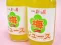 【青梅 美よしの園オリジナル】果肉入り梅ジュース(ストレートタイプ) 180ml×15本セット