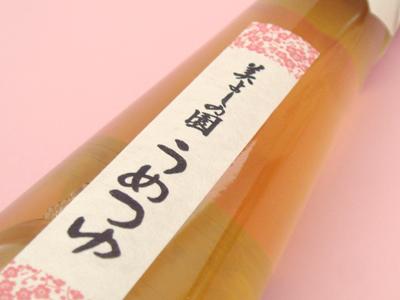 【青梅 美よしの園オリジナル】 うめつゆ(めんつゆ) 200ml