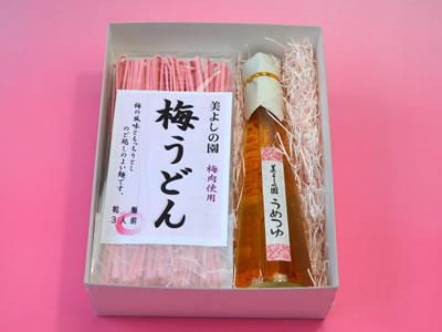 【青梅 美よしの園オリジナル/ギフト】梅うどん 270g・梅つゆ 200mlのセット
