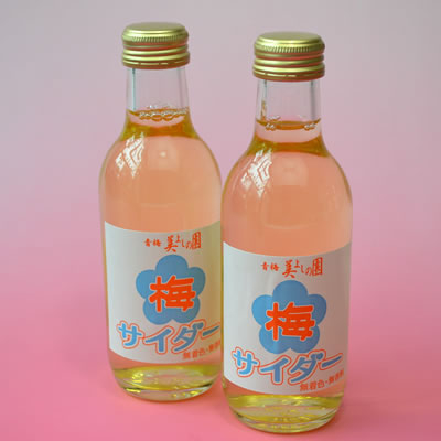 梅サイダー Ume Soda Pop 200ml