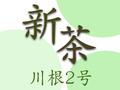 【2020茶師十段の新茶】川根2号(普通蒸しタイプ) 100g