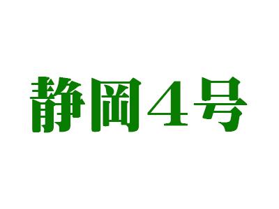 【2021茶師十段の新茶】静岡4号(深蒸しタイプ)  100g